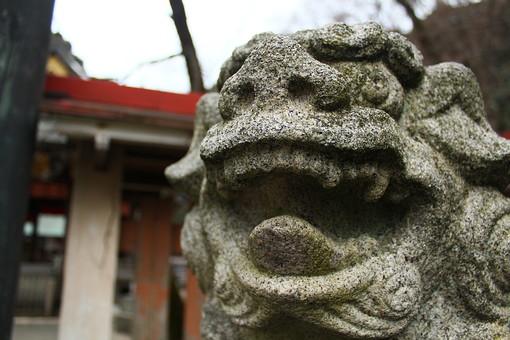 日本 和風 石像 狛犬 こま犬 獅子 石 像 表情 鼻 鼻の穴 口 開ける あ 目 アップ 顔 塀 守護 守る 勢い 勢力 かわいい 誠実 信頼