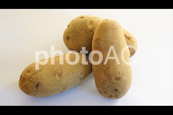 ジャガイモ(メークイン)の写真