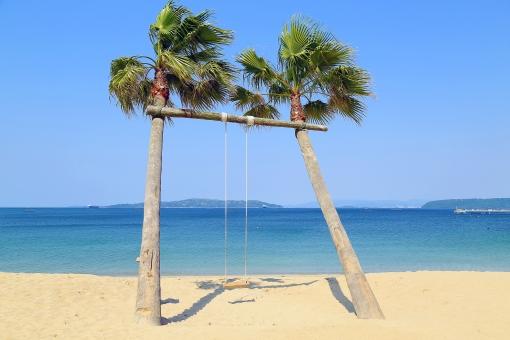 「椰子の木ブランコ」の画像検索結果