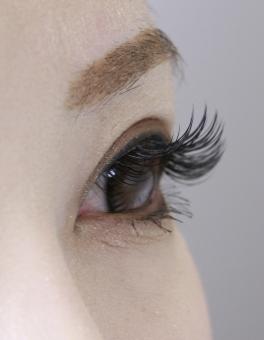 まつげ まつ毛 マツゲ つけま マツエク エクステ 美容 エステ 女性 女の子 眉毛 眉 目 女 女子 サロン まぶた 瞼