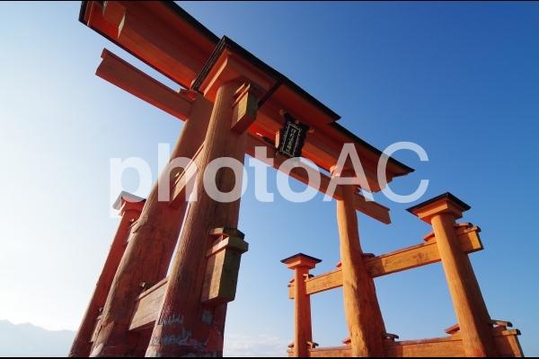 宮島の大鳥居の写真