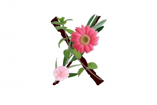 アルファベット ローマ字 英文字 文字 植物 花 グリーン ガーベラ カーネーション テクスチャ 素材