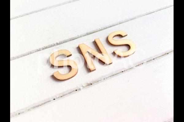 SNS1の写真