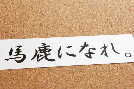 馬鹿になれ 格言 名言 メッセージ 成功者 常識 非常識 主観的 客観的 日本語 コトバ 言葉 コメント 馬鹿 利口 本当の自分 裸 恥 失敗 チャレンジ 挑戦 先入観 背景素材 壁紙 考え過ぎ 思考 考え方 捉え方 人生 生き方
