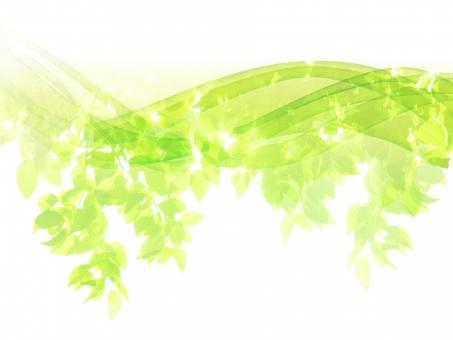新緑木漏れ日と流線型の抽象背景の写真