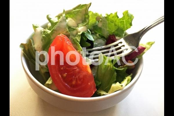 グリーンサラダの写真