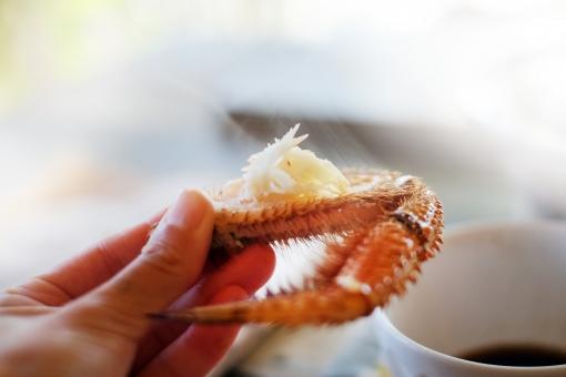 毛ガニ けがに ケガニ 毛蟹 カニ かに 蟹 鍋 なべ ナベ 冬 料理 土鍋 海鮮 蟹爪 かにつめ 食卓 食事 野菜 蟹肉 蒸し蟹 ポン酢 食べる 蟹を食べる 蟹をほぐす