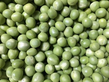 グリンピース 野菜 豆 5月 緑 まめ 農業 農家 豆ごはん 美味しい 食材