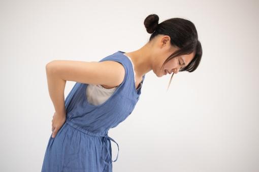 椎間板ヘルニアの写真素材|写真素材なら「写真AC」無料(フリー)ダウンロードOK
