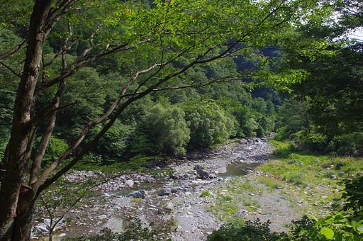 山奥 山 深緑 緑 グリーン 新鮮 空気 酸素 空 快晴 晴れ 晴天 曇り 白い雲 切り抜き 余白 素材 樹木 植物 風景 環境 大自然 大地 広大 青い 爽やか 夏 涼しい 川 浅瀬 小石 水辺 水 緩やか 穏やか 透明