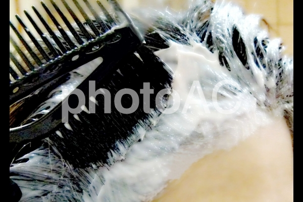白髪染め セルフカラー 女性 ヘアカラー 美容の写真