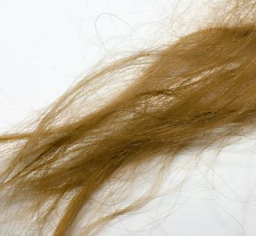 髪 茶髪 金髪 痛み 長い 傷み ぼさぼさ 補修 美容 ボサボサ 湿気 傷んだ髪 傷んでる髪 女性 辛い 染める 影響 人 おしゃれ カラー ヘアカラー 髪の毛 ダメージ 気をつける ボサボサな髪 毛先 ブラッシング エクステ