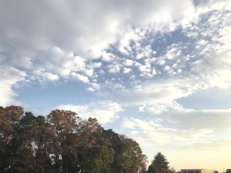 休日の冬空の写真