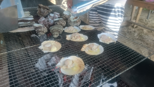 島 海 海鮮 バーベキュー はまぐり 蛤 bbq サザエ さざえ