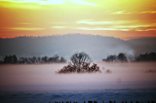 冬 風景 景色 冬景色 自然 屋外 外 野外 朝 早朝 夜明け 朝焼け 朝もや もや 霧 朝霧 空 雲 山 山並み 木 シルエット 幻想的 大地 冷却 漂う 雪 雪景色 絵画的