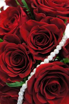ばら バラ 花びら 深紅 花 愛 美 愛情 情熱 熱烈な恋 植物 フラワー 種子植物 花弁 生花  葉 葉っぱ 赤い花 5月 6月 10月 11月 ローズ レッドローズ パール 真珠 赤