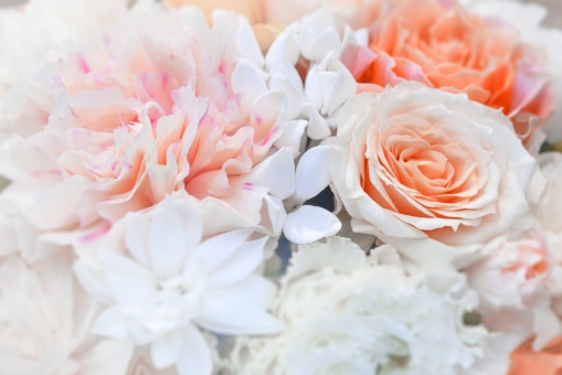 バラ カーネーション 花 花束 植物 背景 背景素材 ピンク 母の日 バレンタイン クリスマス 結婚 記念日 祝福 きれい やさしい テクスチャー テクスチャ