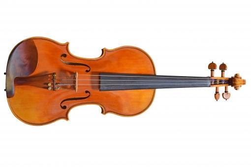 バイオリン(バック白)の写真
