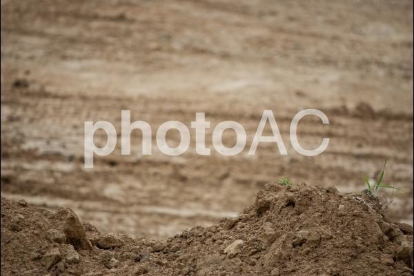 赤土 グラウンドの写真