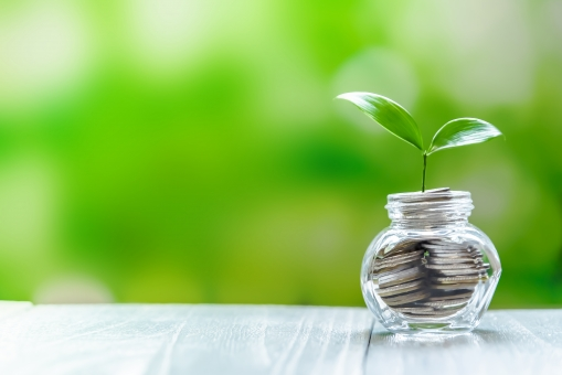 投資イメージ グリーンの写真