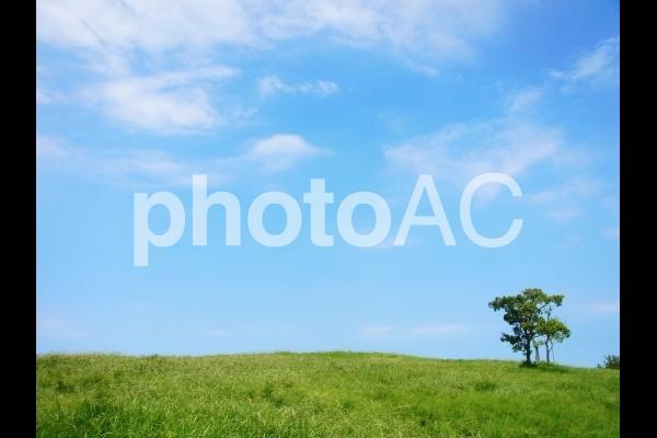 草原と青空 #2の写真