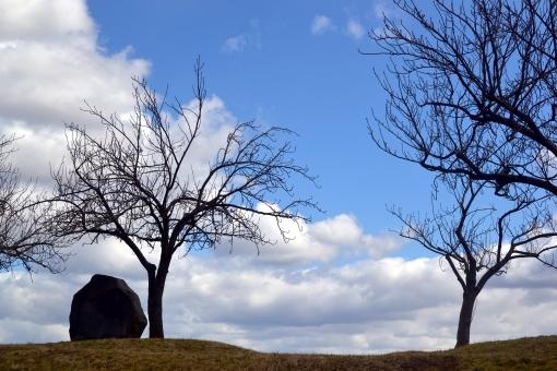 空 晴れ 木 岩 冬 雲 枯れ木 冬の終わり