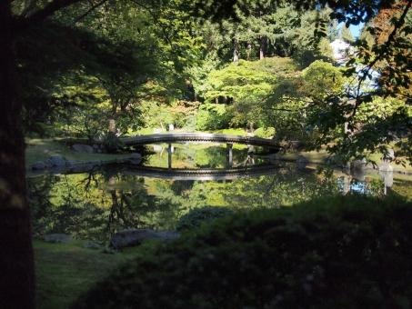 「ac 写真 古池」の画像検索結果