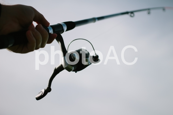 釣り41の写真