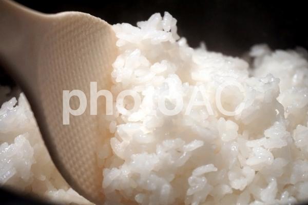 炊き立てのご飯の写真