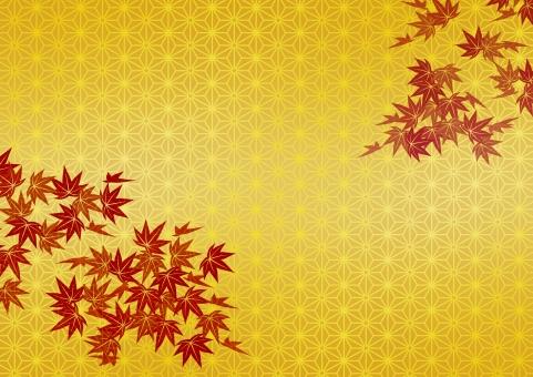 テクスチャ  テクスチャー  伝統模様   背景  金  金箔  ゴールド  金屏風  背景素材 工芸  壁紙  屏風  和紙 歌舞伎 慶事 お正月 紅葉 もみじ かえで 和柄 壁紙 麻の葉 あさのは アサノハ