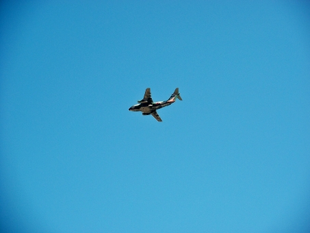 C-11 ジェット輸送機 輸送機 飛行機 軍用機 航空ショー 秋のイベント 航空祭 イベント 秋 青空 秋空 晴天 快晴 群青 紺碧 展示 空 風景 景色 入間基地 基地
