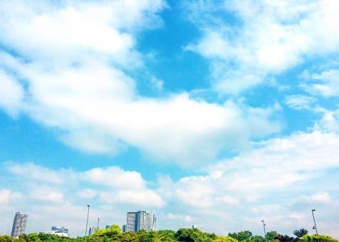 青空と緑と住宅1の写真