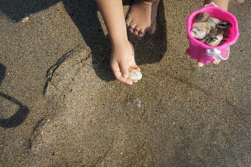 海岸 海 うみ 海洋 ビーチ 海水浴 夏休み 夏 自然 砂浜 砂 浅瀬 波打ち際 貝 貝がら 収集 子供 幼児 手 拾う 小さい アップ ハンドパーツ はまぐり ハマグリ 蛤 潮干狩り