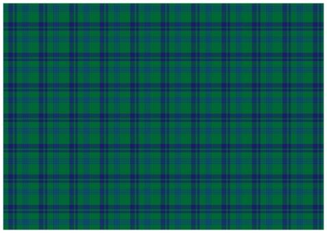 背景 テクスチャ テクスチャー バックグラウンド 背景素材 模様 グラフィック 柄 デザイン 素材 装飾 チェック 四角 格子 格子柄 タータンチェック チェック柄 イギリス 英国 スコットランド 毛織物 ファッション 民族衣装 服飾 ファブリック テキスタイル 緑