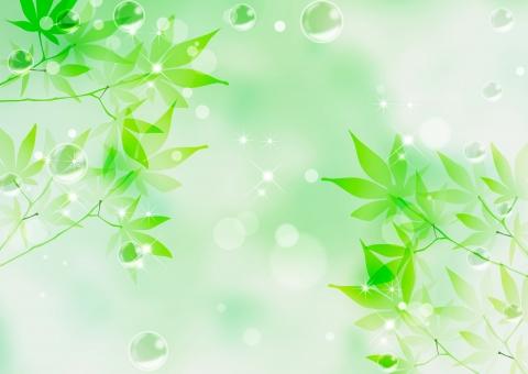 若草 日本 グリーン ポストカード 新緑 光 広告 植物 シャボン 初夏 和風 和 メッセージカード 夏 dm 光線 かえで 色紙 お祝い きれい 記念日 葉っぱ 葉 招待状 飾り 緑 壁紙 カエデ 装飾 涼しい 美しい メッセージ ギフトカード 枠 テクスチャ 背景 シャボン玉 バックグラウンド 爽やか キラキラ 模様