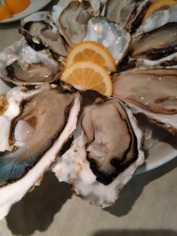 牡蠣 オイスター セレブ 金持ち リタイア リタイヤ リッチ セミリタイア セミリタイヤ 和食 イタリアン フレンチ 海鮮 魚介 おいしい oyster 岩牡蠣 groume rich 殻つき 殻 生牡蠣 rawoyster celeb