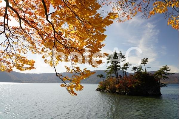 秋の十和田湖の写真