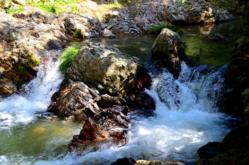 自然 植物 岩 苔 草 緑 陽射し 木漏れ日 影 石 岩 岩場 危険 水 水飛沫 滝 川 流れ 水面 勢い 水流 無人 室外 屋外 風景 景色