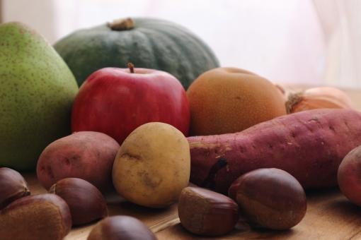 果物 フルーツ 食べ物 りんご リンゴ 料理 野菜 コピースペース たくさん 背景 盛り合わせ 農家 食材 栄養 カボチャ 秋 栗 クリ たまねぎ ジャガイモ じゃがいも かぼちゃ 多い 秋の味覚 秋野菜 梨 玉ねぎ タマネギ さつまいも さつま芋 サツマイモ 薩摩芋 紫キャベツ 国産 秋の野菜 秋果物