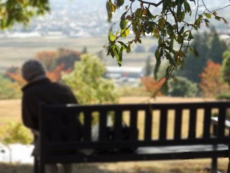老人, シニア, 老後, 老夫婦, 家族, 田舎, 公園, 秋, ベンチ, 離れ離れ, 孤独, シニアライフ, 一休み, 休憩, 一服, 背中, 後姿, たそがれ, 黄昏, 眺める, 眺望, 年金暮らし, 貯金, 生活設計, 老後資金, 定年, 二人暮らし, 生活, ライフスタイル, 介護 ケア 老女 孤独 一人 淋しい 寂しい さびしい 祖母 おばあちゃん ばば おばあさん