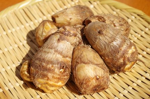 里芋 サトイモ サトイモ科 植物 秋 野菜 食材 食品 食べ物 食物 さといも 里いも 秋の味覚 根菜