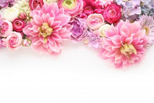 ふわふわ 花のフレーム ピンク系 2の写真