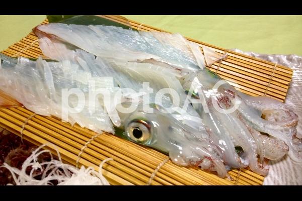 イカの刺身 2の写真