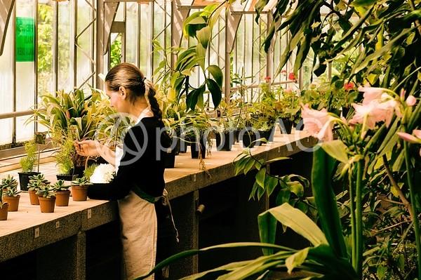 花屋 女性15の写真