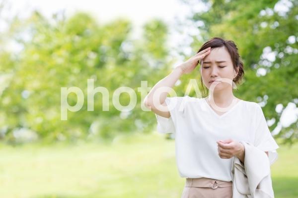 新緑の中の女性の写真