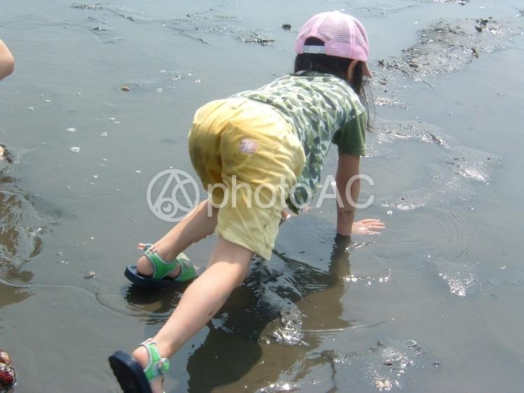 潮干狩りの写真