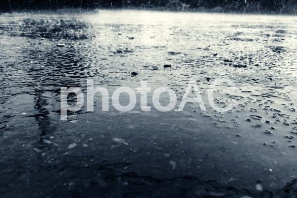 雨でびしょびしょになったアスファルトの写真