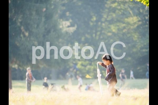 公園で散歩する男の子の写真