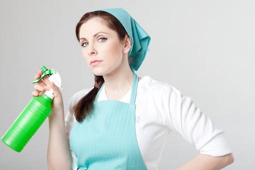 掃除 清掃 クリーニング ハウスキーパー 家事 女性 おんな 女 ウーマン 外国人 エプロン 三角巾 スプレー ボトル 容器 エプロン姿 三つ編み 上半身 持つ 握る 見つめる 噴射 薬剤 汚れ落とし 退治 清潔 クリーン 大掃除 きれい好き 緑 グリーン 室内 屋内 白背景 白バック mdff140