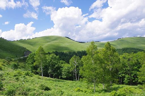 長野の大自然64の写真